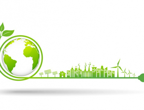 Green Energy 101: How to Go Green in 2020